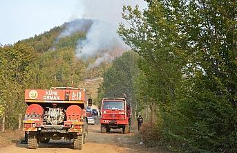 Kastamonu'da çıkan orman yangınına müdahale ediliyor