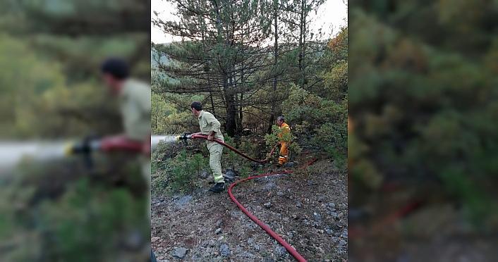 Kastamonu'da orman yangınında 2 hektar alan zarar...