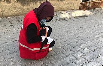 Kastamonu'da Türk Kızılay Kadın Kolları gönüllüleri...