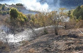 Kastamonu'da yangında 2 hektar ormanlık alan zarar gördü