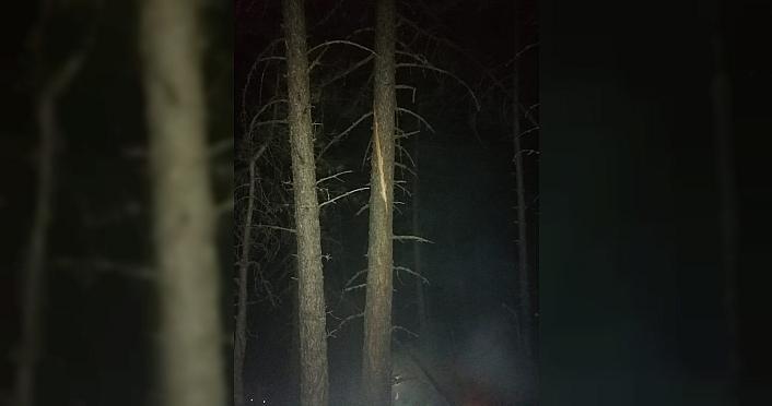 Mudurnu'da düşen yıldırım orman yangınına neden oldu