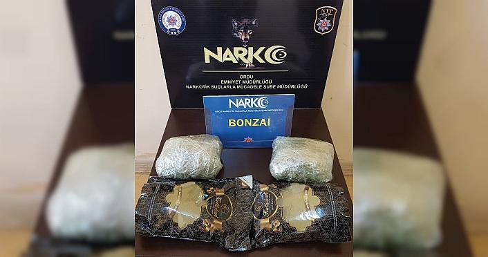 Ordu'da uyuşturucu operasyonunda bir kişi tutuklandı