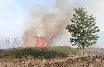 Samsun'da ağaçlık alanda çıkan yangın ekiplerin müdahalesiyle söndürüldü