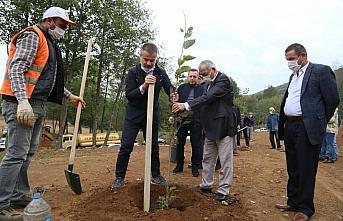 Samsun'da doğaya ve Kovid-19 salgınına dikkati çekmek için Nebiyan Dağı'nda fidan dikildi