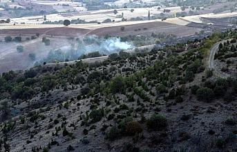 Tokat'ta çıkan orman yangınında 3 hektar alan...