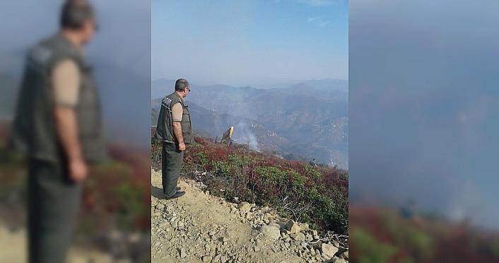 Trabzon'da iki farklı noktada örtü yangını meydana...