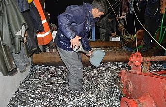 Bartın'da palamuda erken veda eden balıkçıların...