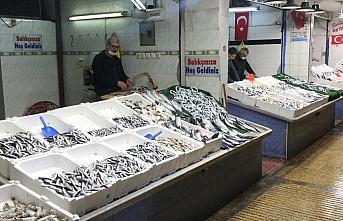 Batı Karadeniz'de balığın azalması fiyatları...