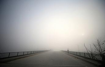 Düzce'de yoğun sis ulaşımı olumsuz etkiliyor