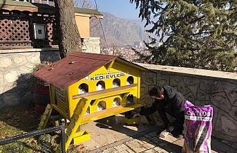 Amasya'da sokağa çıkma kısıtlamasında sokak...