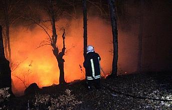 Amasya'da çıkan orman yangını söndürüldü