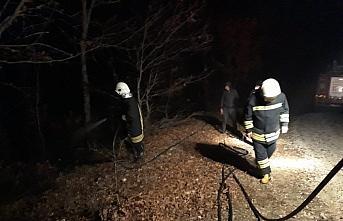 Amasya'da samanlıkta çıkan yangın ormana sıçradı