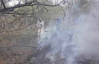 Artvin'de örtü yangını kontrol altına alındı