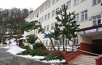 Bartın'da şiddetli rüzgar okulun çatısını uçurdu, ağaçları devirdi