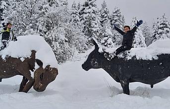 Doğa harikası Kafkasör Yaylası'nda kış bir başka...