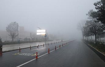 Düzce ve Bolu'da sis etkili oluyor
