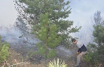 GÜNCELLEME - Kastamonu'da çıkan orman yangını kontrol altına alındı
