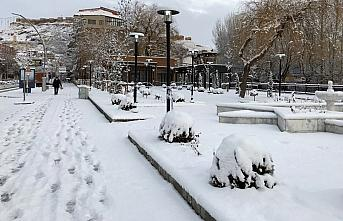 Karadeniz'de 5 ilde kar yağışı devam ediyor