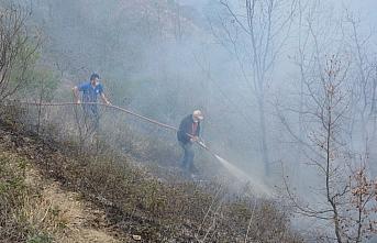 Kastamonu'da orman yangınına müdahale ediliyor