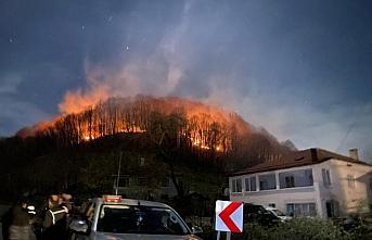 Ordu'da çıkan örtü yangınları söndürüldü