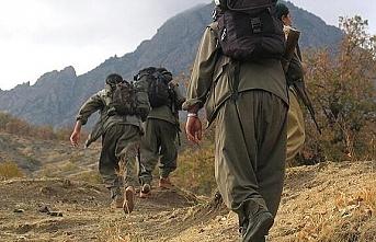 PKK'lı teröristin ifadesi, 'En büyük korkumuz havadan gelen'