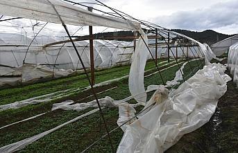 Sinop'ta kuvvetli rüzgar seralara zarar verdi