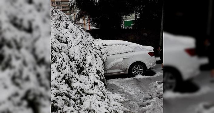Zonguldak'ta yoğun kar yağışından devrilen ağaçlar...