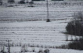 Kar yağışı Kavaklı çiftçileri sevindirdi
