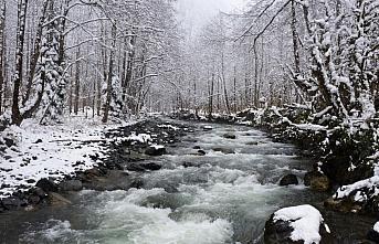 Rize ve Giresun'da kar dolayısıyla 41 köy yolu ulaşıma kapandı