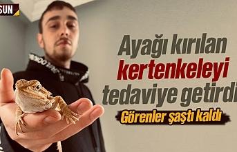 Samsun'da ayağı kırılan kertenkeleyi hayvan hastanesine tedaviye getirdi