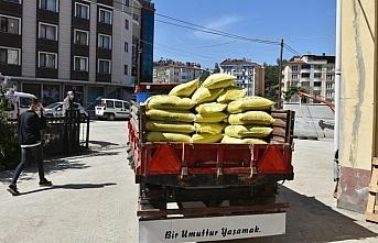 Boyabat ilçesinde çiftçilere 30 ton çeltik tohumu...