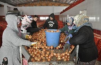 Cumhurbaşkanı Erdoğan'ın müjdesi kuru soğan ve patates üreticilerini sevindirdi
