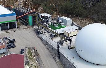 Düzce'deki çöpler katı atık ayrıştırma tesisinde geri dönüşüme kazandırılıyor