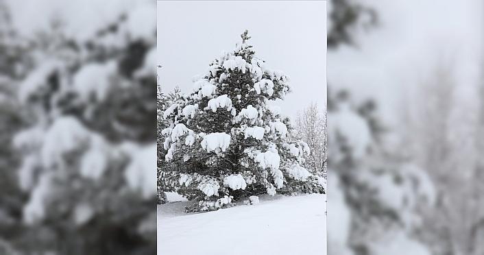 Kastamonu, Çorum, Sinop, Tokat ve Çankırı'da kar etkili oldu
