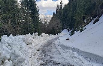 Kastamonu'da ekipler, ilkbaharda karla mücadele çalışması...