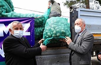 Ordu'da 100 ton tohumluk patates dağıtılacak