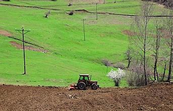 Ordu'da 300 dönümlük atıl arazi yeniden tarıma kazandırıldı