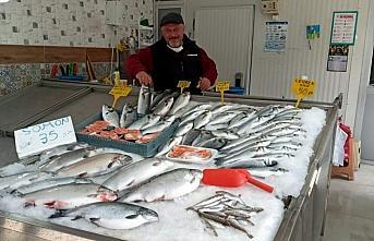 Sinop'ta tezgahlarda av balıklarının yerini havuz...