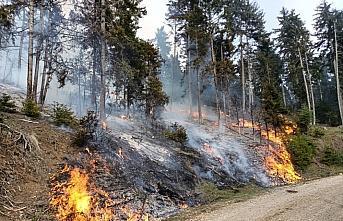 Artvin'de ormanlık alanda çıkan yangın 4 saatte kontrol altına alındı