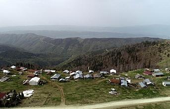Batı Karadeniz yaylalarında iki mevsim bir arada...