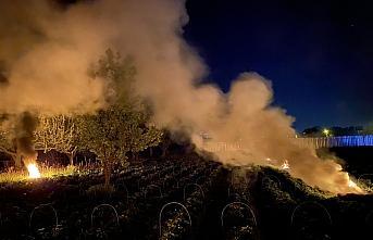 Çilek tarlasında zirai dona karşı dumanlı gece nöbeti