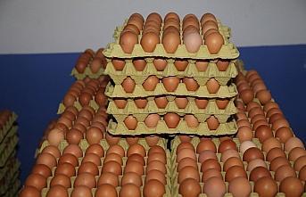 Ordu'da üretilen organik yumurtalar Dubai'de tüketiciyle...