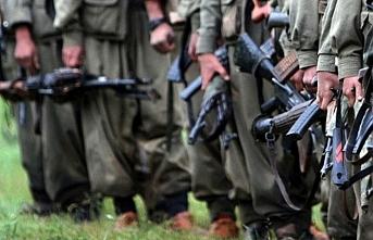 Pençe-Şimşek ve Pençe-Yıldırım operasyonlarında 113 terörist etkisiz hale getirildi