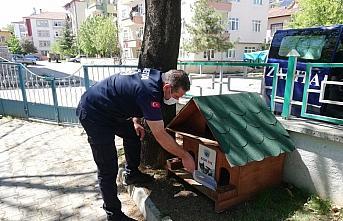 Taşköprü Belediyesi sokak hayvanlarını unutmadı