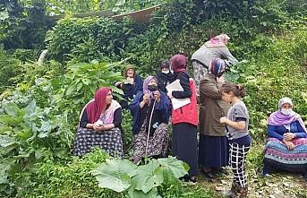 Aile ve Sosyal Hizmetler Bakanlığı Rize'de selden etkilenenler için vakıflara 1 milyon lira kaynak aktardı