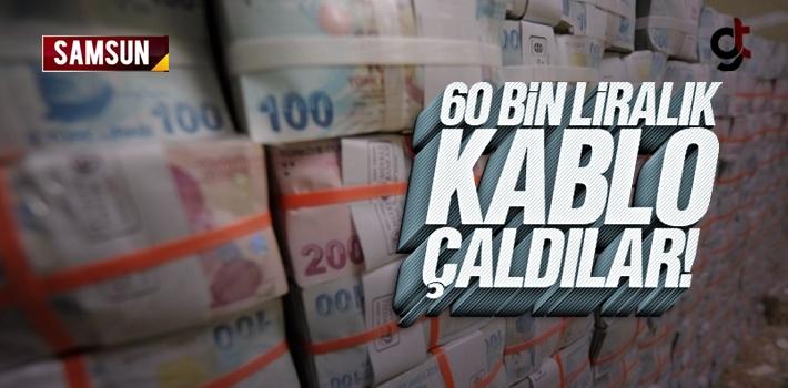 Çarşamba ve Ayvacık İlçelerinde 60 Bin Lira Değerinde...