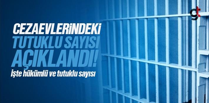 Cezaevlerinde Tutuklu ve Hükümlü Sayısı Açıklandı