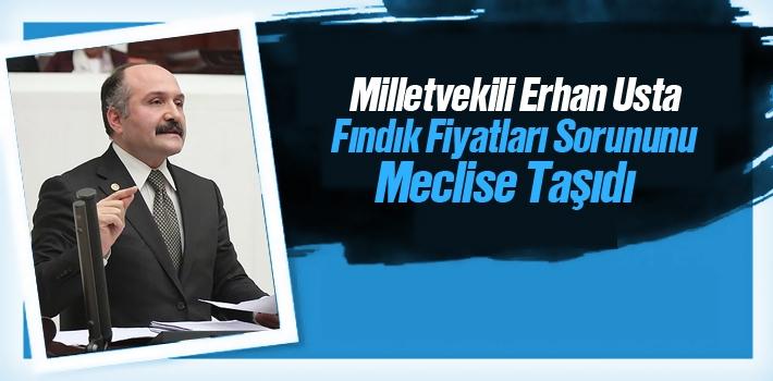 Erhan Usta, Fındık Fiyatları Sorununu Meclise Taşıdı