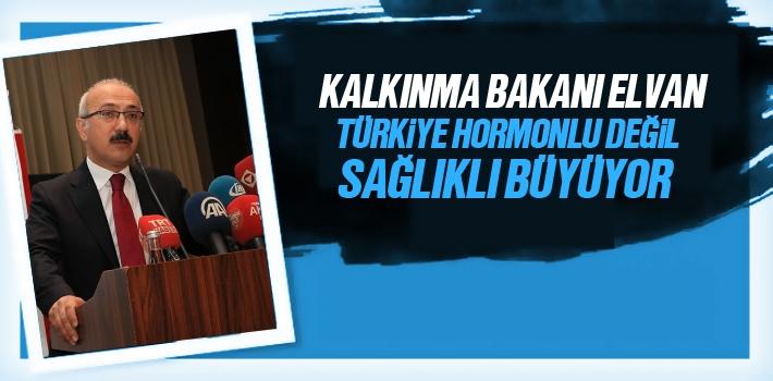 Kalkınma Bakanı Elvan, Türkiye Hormonlu Değil...