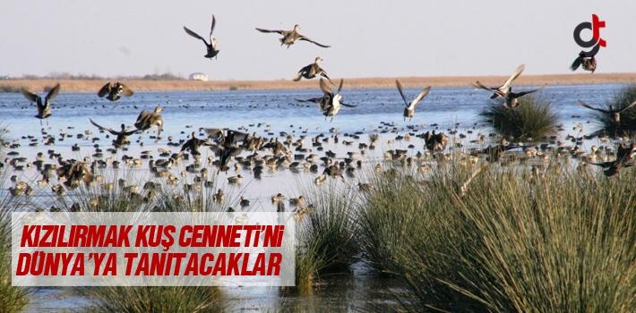 Kızılırmak Kuş Cenneti'ni Dünya'ya Tanıtacaklar